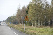 resized_FINLANDIA ARQUITECTURA (476)
